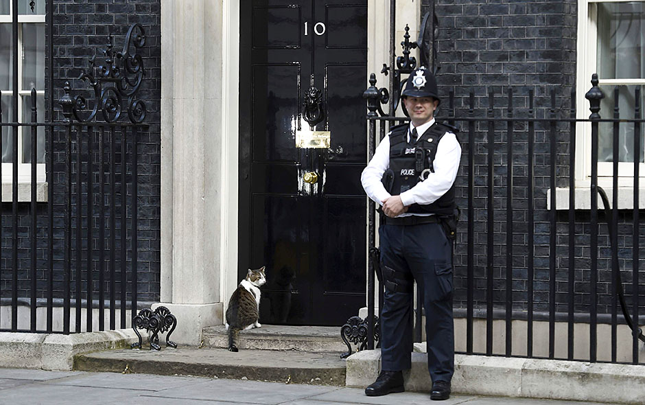 El gato Larry se queda en la residencia del Primer Ministro británico